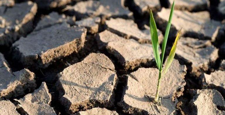 الصحة العالمية تحذر التغير المناخي قنبلة بيئية تهدد العالم